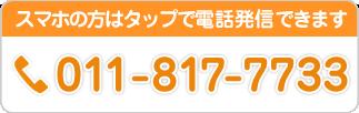 0118177733